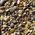 pebbles of a shingle beach or a river stock photo © nito