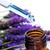 bottiglia · aromaterapia · essenza · rosolare - foto d'archivio © nito