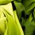 groene · satijn · textiel · achtergrond · goud - stockfoto © Nneirda