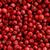 pembe · biber · kırmızı · yalıtılmış · beyaz · üst - stok fotoğraf © nneirda