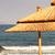guarda-sol · tropical · branco · praia · colorido - foto stock © nneirda