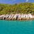 красивой · зеленый · острове · синий · океана - Сток-фото © nneirda
