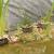 herbe · artificielle · feuille · texture · printemps · jardin · fond - photo stock © nneirda