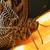 gedetailleerd · macro · tropische · vlinder · vleugel · bruin - stockfoto © nneirda