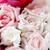 csinos · rózsaszín · rózsák · menyasszonyi · virágcsokor · szelektív · fókusz - stock fotó © nneirda