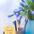 感謝 · 文字 · 接着剤 · 注記 · 女性 - ストックフォト © novic