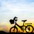 велосипед · силуэта · солнце · набор · пейзаж · лет - Сток-фото © nuiiko