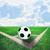 coin · terrain · de · football · herbe · artificielle · blanche · ligne · herbe - photo stock © nuiiko