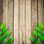 green leaves on the old wooden background  stock photo © nuiiko