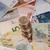 euro · monete · isolato · macro - foto d'archivio © ocusfocus
