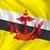 flag of brunei stock photo © ojal