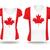 カナダ · サッカー · ファン · フラグ · セクシー - ストックフォト © ojal