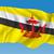 térkép · Brunei · néhány · absztrakt · világ · háttér - stock fotó © ojal