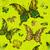 seamless vivid green vintage pattern stock photo © olgadrozd