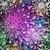 緑 · 抽象的な · 光 · 斑 · 星 · 自然 - ストックフォト © olgadrozd