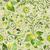 seamless green floral pattern stock photo © olgadrozd