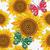 bağbozumu · süs · ayçiçeği · kalem · ayçiçeği - stok fotoğraf © olgadrozd