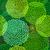 padrão · sem · costura · círculo · verde · eps · 10 - foto stock © olgadrozd