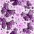 printemps · grunge · blanche · modèle - photo stock © olgadrozd