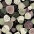 sem · costura · outono · pálido · folhas - foto stock © olgadrozd