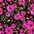 dunkel · floral · Muster · lebendig · Blumen - stock foto © olgadrozd