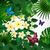 tropicales · papillons · exotique · laisse · feuillage · créatures - photo stock © olgayakovenko