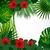 tropical floral design background stock photo © olgayakovenko