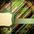 textura · grunge · plantilla · vector · negocios · papel - foto stock © olgayakovenko