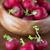 radis · femme · jardinier · croissant - photo stock © olira