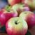 csoport · érett · almák · fa · kész · aratás - stock fotó © olira