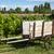 wooden cart on a vineyard stock photo © oliverfoerstner