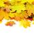 Geel · esdoorn · eiken · bladeren · najaar · vallen - stockfoto © pakhnyushchyy