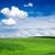 green field stock photo © pakhnyushchyy