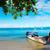 klif · boten · zee · zuiden · Thailand · natuur - stockfoto © pakhnyushchyy