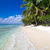 plage · plage · tropicale · mer · vague · sable · palmiers - photo stock © Pakhnyushchyy
