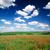 haşhaş · mavi · gökyüzü · gökyüzü · bahar · çim · manzara - stok fotoğraf © pakhnyushchyy