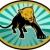 lion or cougar crawling towards you stock photo © patrimonio