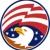 american bald eagle with flag stock photo © patrimonio