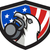 bald eagle lifting kettleball usa flag shield retro stock photo © patrimonio