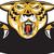tigris · nagy · gyönyörű · macska · narancs · fekete - stock fotó © patrimonio