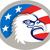 bald eagle head usa flag oval retro stock photo © patrimonio