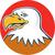amerikaanse · kaal · adelaar · foto · vleugels - stockfoto © patrimonio