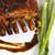 gustoso · alla · griglia · verdura · bordo · salute - foto d'archivio © paulovilela
