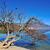lasu · jezioro · krajobraz · Chiny · charakter · piękna - zdjęcia stock © paulwongkwan