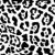 jaguar · vetor · textura · preto · e · branco · isolado · natureza - foto stock © pavelmidi