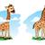 zsiráf · illusztráció · kettő · aranyos · zsiráfok · zöld · fű - stock fotó © penivajz