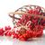 赤 · 液果類 · バラ · 緑の葉 · 孤立した - ストックフォト © peredniankina