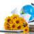 globe with books and flowers stock photo © peredniankina