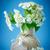 開花 · 写真 · 曇った · ソフト · 照明 · 許可された - ストックフォト © peredniankina