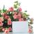 fresco · rosas · quadro · rosa · belo · isolado - foto stock © peredniankina